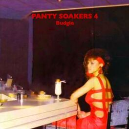 Album cover of Panty Soakers 4