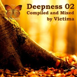 Album cover of Deepness 02 (Compiled by Victima)