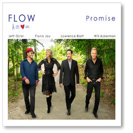 FLOW - Promise