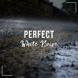 Album cover of # 1 Album: Perfect White Noise