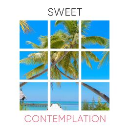 Album cover of # 1 Album: Sweet Contemplation