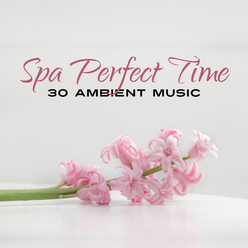 Various Artists: Spa Perfect Time: 30 Ambient Music for Beauty