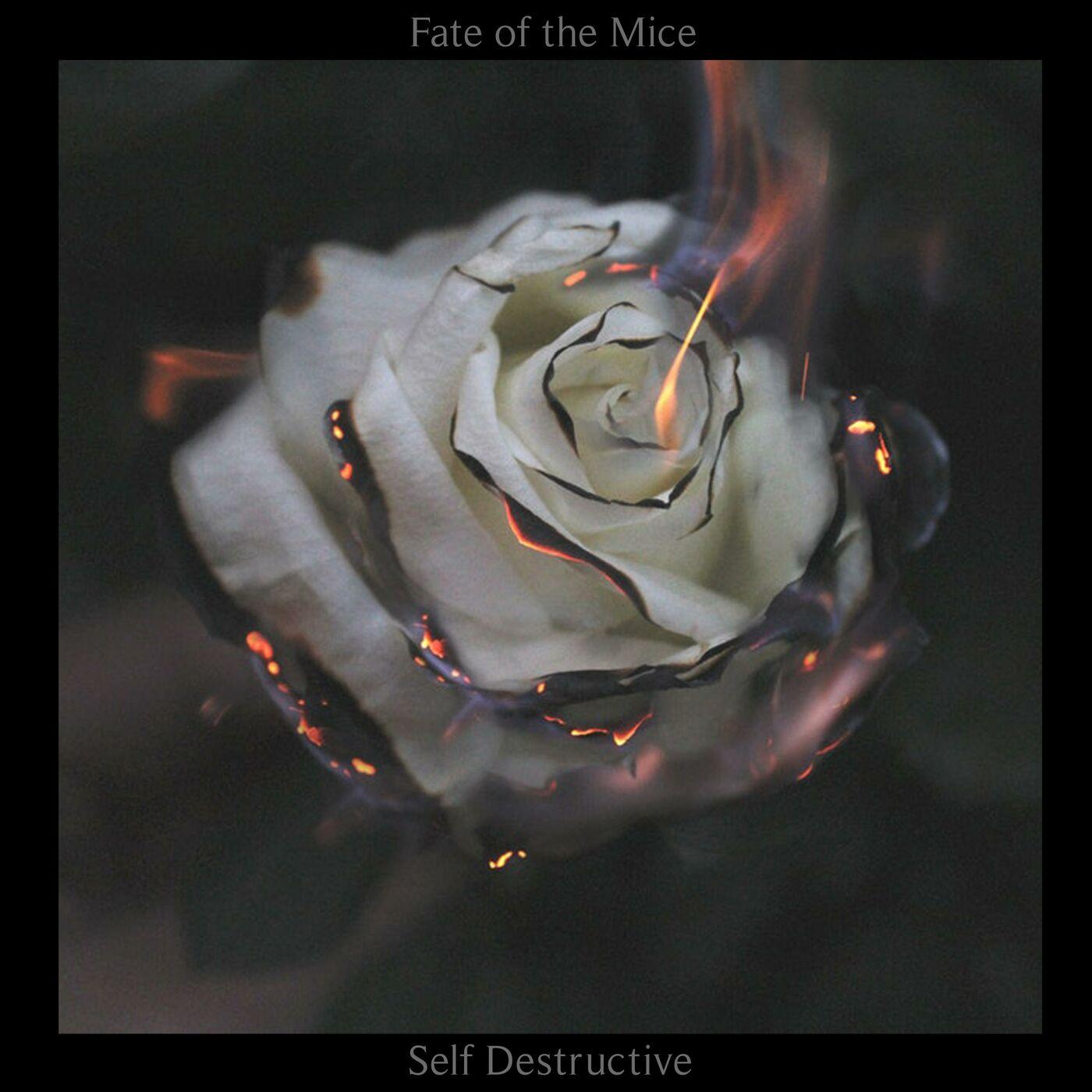 Fate of the Mice - Self Destructive (2018)