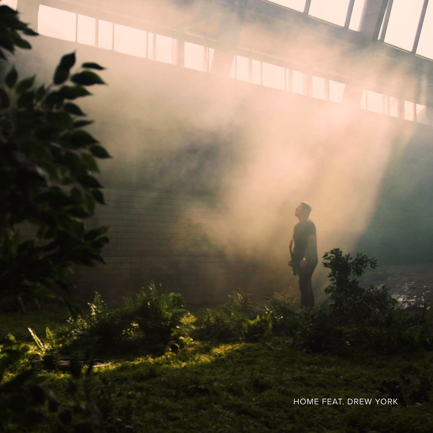 Siamese - Home [single] (2020)