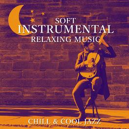 Relaxing Jazz Guitar Academy: Soft Instrumental Relaxing