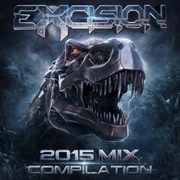 excision discography