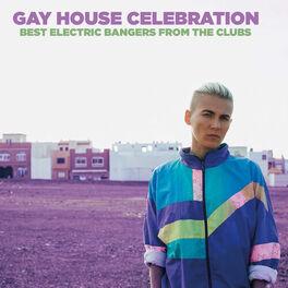 Album cover of Gay House Celebration