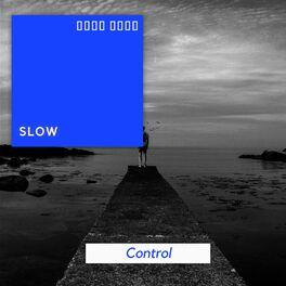Album cover of # 1 Album: Slow Control