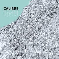 Do Not Turn On - CALIBRE