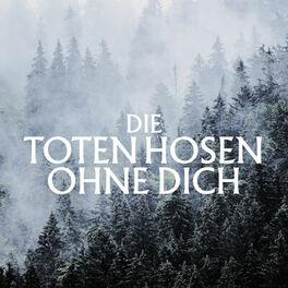 Dusseldorf Die Toten Hosen Begeistern Mit Neuer Single Express De