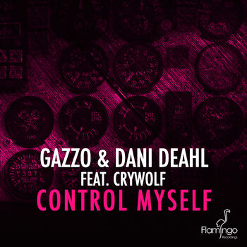 Control Myself cover
