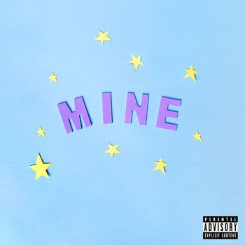 Mine cover