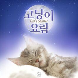 Album cover of Cat's Shelter