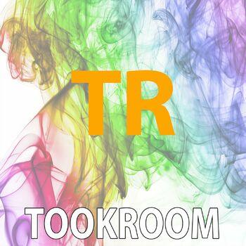 Story (Tookroom Dub Remix) cover