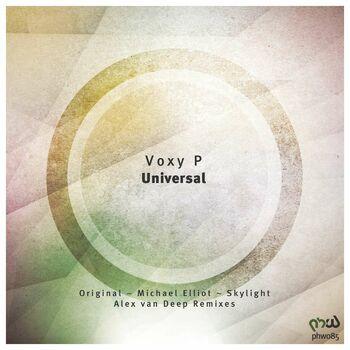 Universal (Alex Van Deep Remix) cover