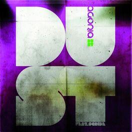 Album cover of Dust