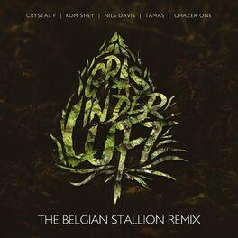 Album cover of Gras in der Luft (The Belgian Stallion Remix)