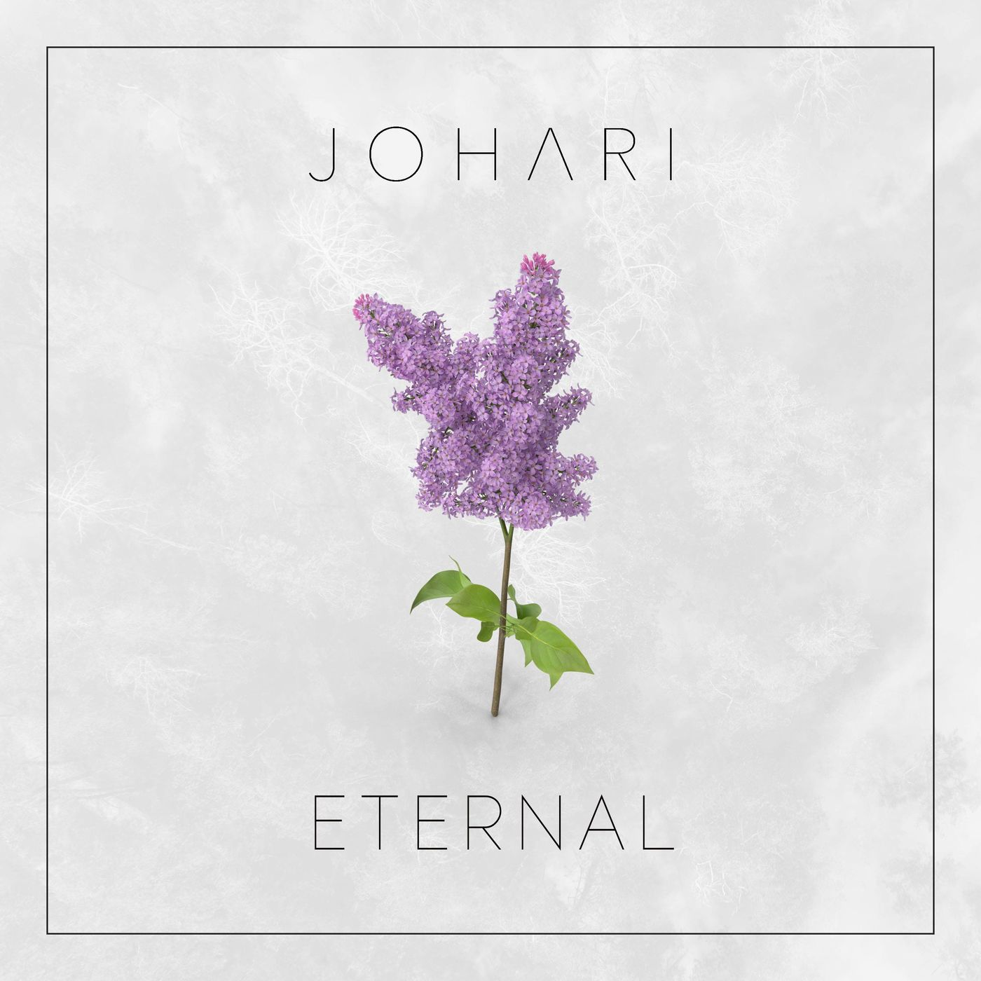 Johari - Eternal [single] (2020)