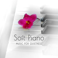 Various Artists: Soft Piano Music for Quietness: Relaxing Piano