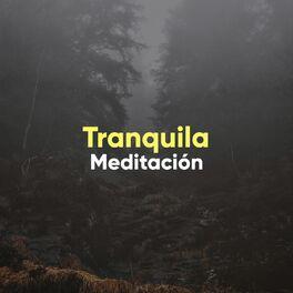 Album cover of # 1 A 2019 Album: Tranquila Meditación