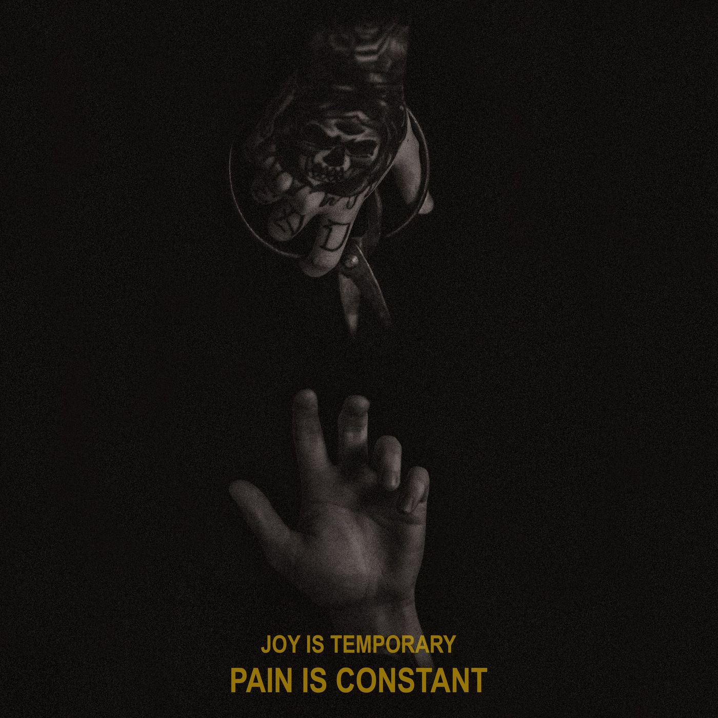 PALESKIN - Joy is Temporary, Pain is Constant (2021)