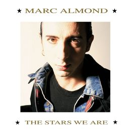 Album cover of The Stars We Are