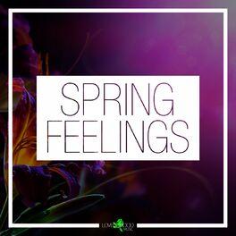 Various Artists - Spring Feelings
