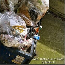 Wow, That's a Lot of Trash