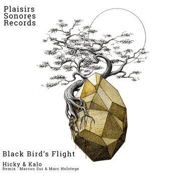 Black Bird's Flight cover