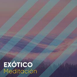 Album cover of # 1 Album: Exótico Meditación