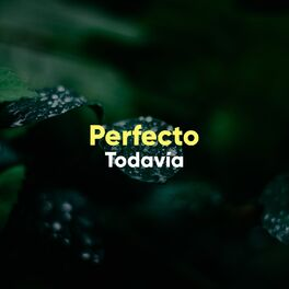 Album cover of # 1 Album: Perfecto Todavía