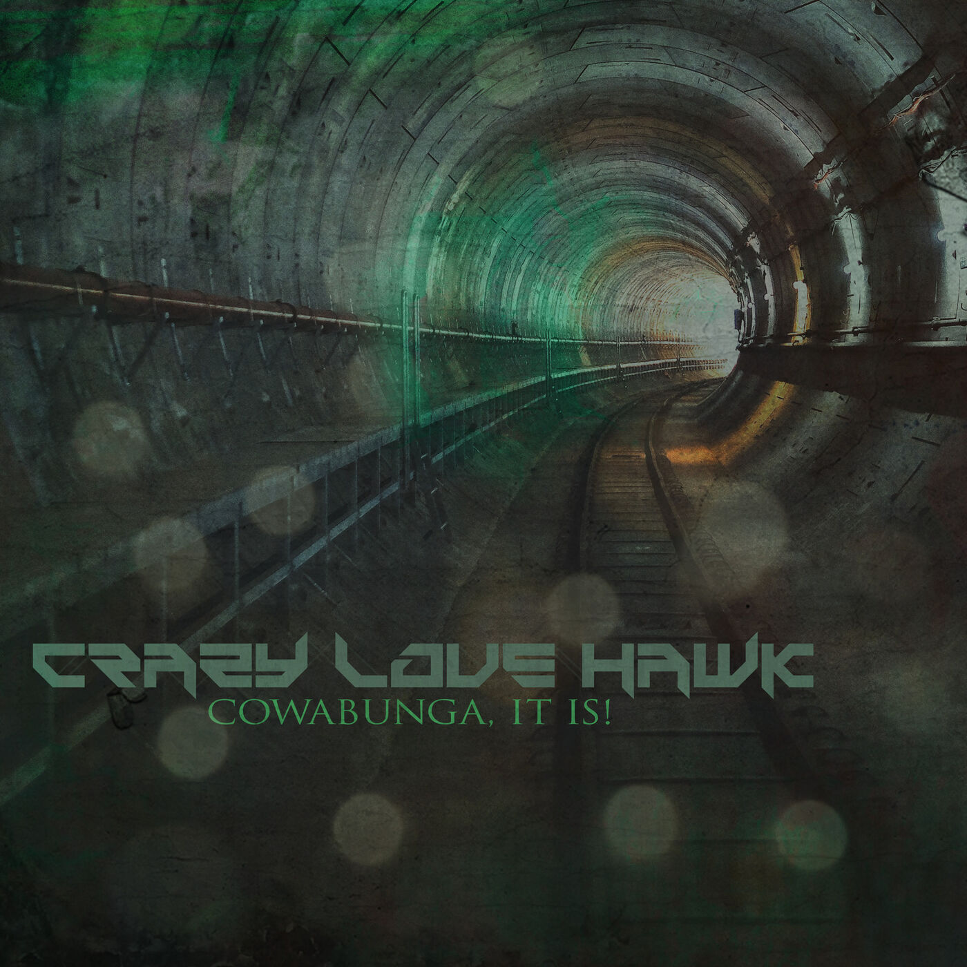 Crazy Love Hawk - Cowabunga, It Is! [single] (2020)