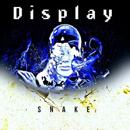 Album cover of Display