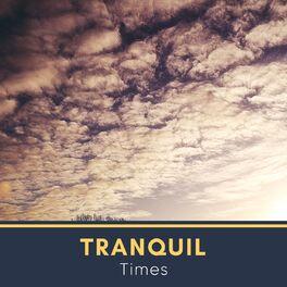 Album cover of # 1 A 2019 Album: Tranquil Times