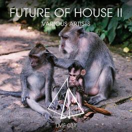 Album cover of Future of House II