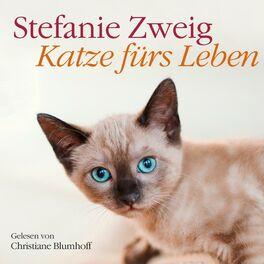 Album cover of Katze fürs Leben
