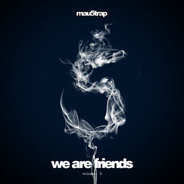 Album cover of We Are Friends, Vol. 5