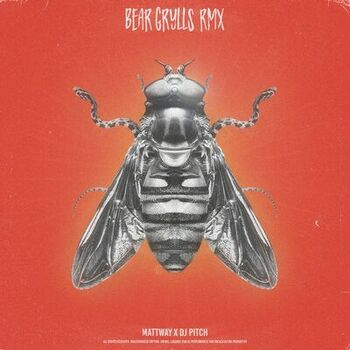 Bear Grylls Remix cover