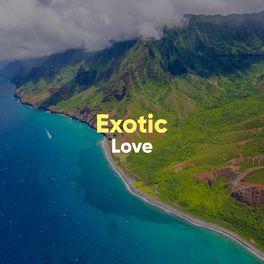 Album cover of # 1 A 2019 Album: Exotic Love
