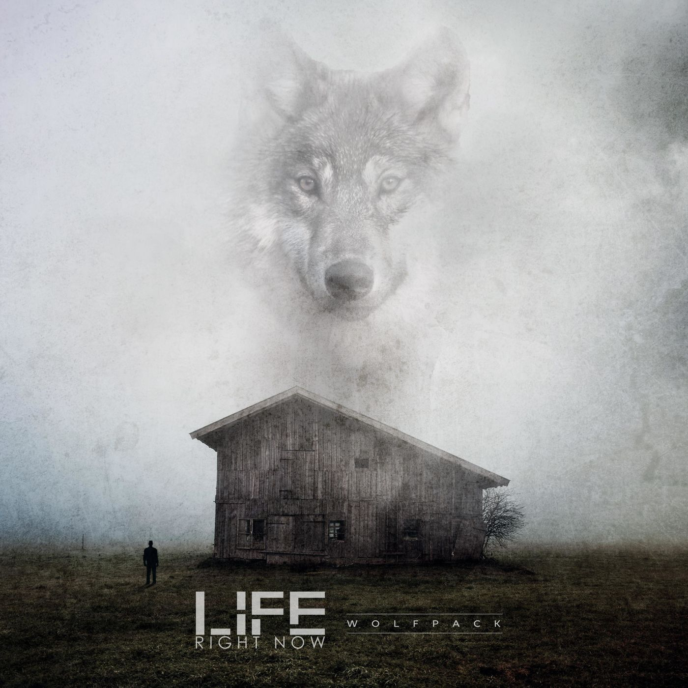 Life Right Now - Wolfpack [single] (2019)