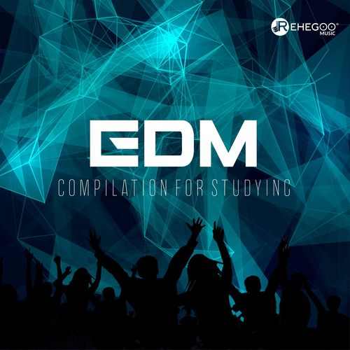 Various Artists: EDM Compilation for Studying: Electro Vibes