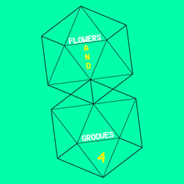 Album cover of Flowers and Grooves 4
