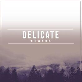 Album cover of Delicate Chords