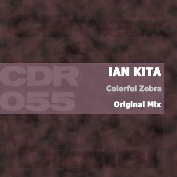 Colorful Zebra cover