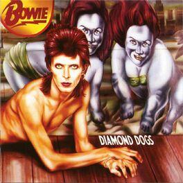 Album cover of Diamond Dogs (30th Anniversary)