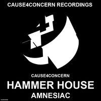Hammer House (Fragz rmx) - CAUSE4CONCERN