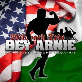 Album cover of Hey Arnie