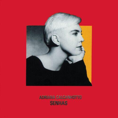 Baixar CD Senhas – Adriana Calcanhotto (1992) Grátis