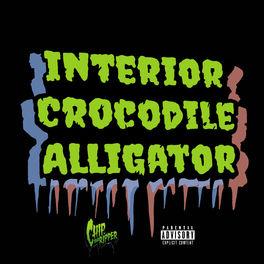 Album cover of Interior Crocodile Alligator