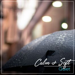 Album cover of # 1 Album: Calm & Soft Quiet